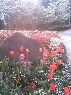 Ohkuryama park