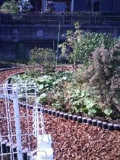 2nd garden