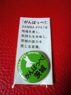 GAMBA-PPE IBARAKI!