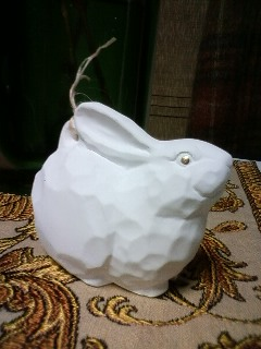 rabbits for next year